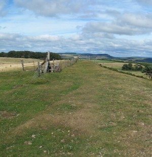 Panorama North of Knighton